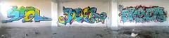 Stol|Boer|Oksen (Boer 412) Tags: boer graffiti romania iasi stol seyr nesk oksen boer412