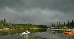 The Great Expedition (Fish as art) Tags: boating travel northwestterritories canada fishing summer river research sheefish landscape coregonids genetics yellowknife