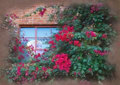 Admiring the View (bethrosengard) Tags: bethrosengard photomanipulation digitallyenhanced photoart digitalmagic digitalart