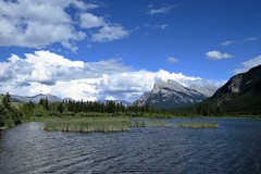 Canadian Summer (Patricia Henschen) Tags: vermilionlakes vermilion lakes banff alberta canada banffnationalpark national park canadian rockies northern mountains lake clouds rocky mountrundle drive roadside larch trees