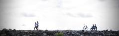 Sur le brise-lames ... ( P-A) Tags: briselames marina cvgr clubdevoilegranderivire aylmerqc eau plaisanciers navigation passion sport activit douceur repos photos simpa nikonflickraward