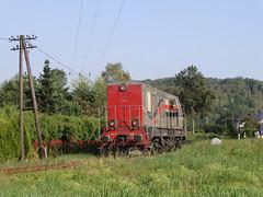 SM31-010 (MarSt44) Tags: fablok sm31 dla sm31010 dolnolskie linie autobusowe krzeszowice polska kolej train diesel railway private poland maopolska