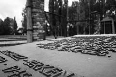 20130916Auswitch II Birkenau12 (J.A.B.1985) Tags: auswitch poland polonia iiww worldwar iigm guerramundial holocaust holocausto soah