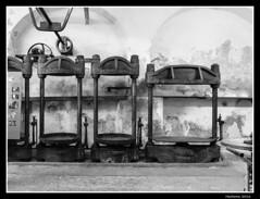 2016-08-02_Moulin-N&B-0015 (Hacheme 26) Tags: architecturebtiments btiments moulineau noiretblanc olive olivier vgtaux mollanssurouvze auvergnerhnealpes france