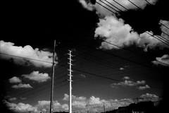 SLICER (Dinasty_Oomae) Tags: leica leicaiiia leica3a  iiia 3a   blackandwhite blackwhite monochrome bw outdoor   chiba  nagareyama  cloud  utilitywire wire  utilitypole