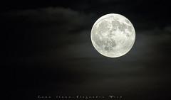 Full moon 16.09.16 (piclex) Tags: fullmoon lunallena noche dark nubes clouds night