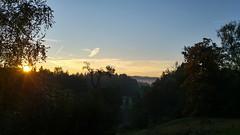 Sunrise@home (chrugail) Tags: nature light tree landscape sun fall outdoors no person sunrise fog