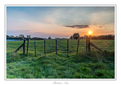 just before the sunset. (Tom Baetens) Tags: 1835mm tombaetens belgium clouds d610 evening filters landscape lee light nikon outdoor sky sunlight sunset tree view