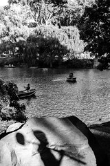 Shadow Man in Central Park (L. A. Nolan) Tags: fuji fujifilm fujifilmxpro2 newyork newyorkcity newyorknewyork ny nyc thebigapple xpro2 shadow centralpark park water pond boats rowboat trees blackandwhite monochrome
