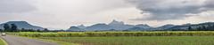 First Glimpse (Konrad Kasperski) Tags: mtwarning nsw national park australia nature hiking walking trek panorama mountains ranges view lookout