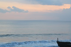 Vastness (brianfarrell) Tags: ocean sea bali indonesia relax march surf peace lot wave serene relaxed tranquil tanahlot tanah 2013