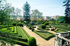 Jardim Botanico (Channed) Tags: green portugal garden view lisboa lisbon jardim jardimbotanico lissabon tuin botanicalgarden ajuda jardimbotanicodaajuda chantalnederstigt