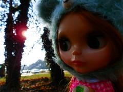 Shine Sun, Shine!