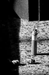 verticale (Maieutica) Tags: shadow bw sun ray cigarette smoke ombra bn smoking sole cucina fumo sigaretta marmo raggio cenere mozzicone