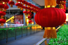 DAO-49403 ,,,,,,,,,, (Chen Liang Dao  hyperphoto) Tags: