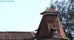 Um telhado diferente (FM Carvalho) Tags: brazil costa house sol brasil riodejaneiro casa do shot sony cybershot lagos dos telhado sonycybershot cyber brsil regio maric costadosol regiodoslagos hx9v sonyhx9v