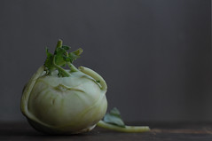 (one never can have enough) kohlrabi (postbear) Tags: food white green kitchen vegetables leaves flesh rind leaf skin vegetable cabbage edible cabbages kohlrabi robfordasshole destroycraigslist robfordisanasshole robfordandstephenharperaredisgustingbigots robfordisalyingsackofshit allconservativesarefilth likeallbulliesrobfordisachickenshitcoward robfordisafraidofeverything robfordisastupidbitch marywalshformayororprimeminister thenewmapfunctionisterrible robfordhasneonazisforfriends foundoutreadingisdifficult robfordisadisgustingfuckingthief thenewuploaderisalsoterrible helpourformermayorisastupidclown formermayorrobfordlikescottaging call911theformermayorsbeatinghiswifeagain richwhiteconservativesbuyjusticeyetagain robfordsexuallyassaultswomen peoplestillplayscrabble