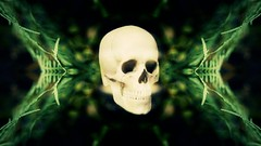 MEMENTO MORI (BER ARCE) Tags: flowers collage digital dark death skull mementomori bone