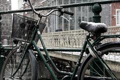 Granizado de bici (Gervasio Varela) Tags: snow bike belgium nieve bicicleta bici belgica gent gante