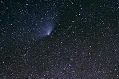 Comet Panstarrs (iksose7) Tags: canon stars long exposure astrophotography astronomy comet 200mm panstarrs 1100d ef200l Astrometrydotnet:status=solved nightskyphotography Astrometrydotnet:version=14400 c42011 Astrometrydotnet:id=alpha20130415084636
