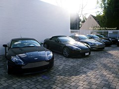 Aston Martin Mafia Line Up! (Alan T. Photography) Tags: super beverlyhills luxury supercar mafia astonmartin 007 vantage jamesbond exotics vanquish exoticcar 2014 astonmartindbs