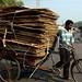 Streets of Delhi