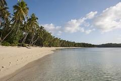 La playa (RubénRamosBlanco) Tags: naturaleza beach nature fiji palms landscape pacific south playa paisaje lagoon palmeras tropical sur laguna pacífico yasawas lailai nanuya