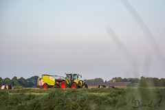 Claas silage demonstration (Daniel H. M.) Tags: wild tractor holland netherlands grass de disco traktor kamps nederland twin shift double scorpion gras jaguar mower agriculture bales silage harvester mowing 850 ares agrar gelderland ballen arion niederrhein anhnger cargos feldarbeit futter dnger claas hcksler 870 kaweco ladewagen axion glle baling pressen fourage gllefass xerion grnland feldhcksler agrarfoto