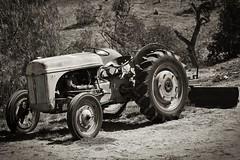 old tractor (BorrowedLightPhoto) Tags: nik silverefex memories blackandwhite testing
