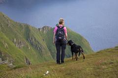 P tur (sirpa.ukura) Tags: fs160828 fotosondag sommarnoje fjllvandring hund dog hiking