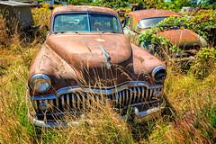 Toothache (KPortin) Tags: abandoned rustyandcrusty rusting automobile chrome grass desoto lewiscounty junkyard rustyrelics cowlitzridgeroad