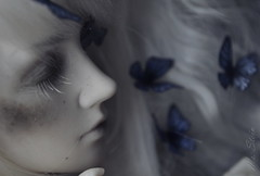 Melancholy.. (Ms. Stein) Tags: bjd elfdoll tasha doll