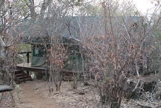 Namibia Dangerous Game Safari - Caprivi Strip 31