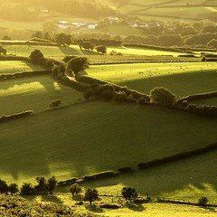 Photo of Ahhh more Brecon Beacons liquid gold Welsh countryside. Nowhere better :)