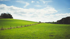 A Hill of Two Halves (ChrisDale) Tags: bluesky chrisdale chrismdale clouds england fence fencepost fields gorsecovert green hill landscape light nottingham notts oxton oxtonbogs posts rolling slope summer sun tree uk wire