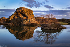 Mývatn Zen Pool (Bill Bowman) Tags: mývatn sunset lake reflection birch iceland ísland placidwater