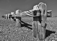 Gnarled (Compactman) Tags: perspective beach groyne wood old gnarled weathered weatherbeaten shadow sunny coast wooden pevensey sussex seaside panasonic lumix g7 blackandwhite b7w monochrome