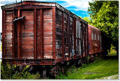Retired Rails (Sigpho) Tags: sigpho nikon train trains