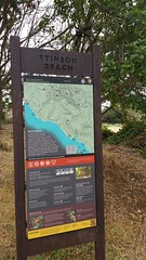 Mount Tamalpais: Rock Spring to Stinson Beach Hike (56) (Planet Q) Tags: mttam marinheadlands