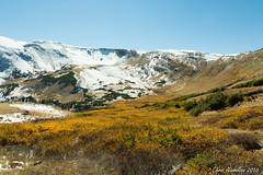 Winter's Coming (Chris Nicholson 1) Tags: rockymountainnationalpark fallriverroad rockymountains fall fallcolors