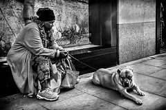 Best Friend (michael.knight65) Tags: blackandwhite streetphotography photooftheday digital outdoor people sony rx100iii mono monochrome city town street black white woman legs london portrait character urban scene european contrast expressive photography candid streetportraiture england travel travelling faces face realpeople reallife dog autofocus