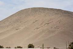 llamas, alpacas men and children (cam17) Tags: arica chile aricachile petroglyphs stonefigures atacamadesert atacama geoglyph llamageoglyph alpacageoglyph humangeoglyph childgeoplyph deserthill
