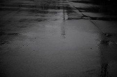 Rainy day (nag #) Tags: texture wet water field rain weather day dof ripple daily structure land material asphalt raindrop