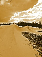 #Daguerreotype (Wishtography) Tags: winter snow nature sepia snowdrift daguerreotype snowdunes capturedmoment allshots streamzoo thiscooledit