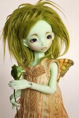 Lettu (customlovers) Tags: green fur doll lettuce fairy bjd resin color14 asella customlovers radicelle nobledolls verdeolivaespecial olivegreenspecial