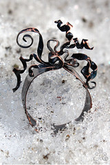 Gorgon (khomzh) Tags: handmade ring copper patina    copperring