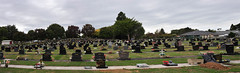 Morrinsville ( Piako ) cemetery ashes section -  Panorama (D70) Tags: road new flowers panorama cemetery district headstones graves soil dirt zealand ashes nz granite section piako morrinsville seales matamatapiako