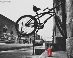 Well, um, I'll have a coke, then. (JayCass84) Tags: street urban blackandwhite bw streetart bird art beautiful bike graffiti fly aluminum paint drink michigan tag awesome detroit streetphotography coke wallart tags can pop spraypaint soda cocacola colorsplash streetview urbanstreetphotography graffitiart urbanphotography 313 motorcity urbanfragment detroitgraffiti instagram instagramapp