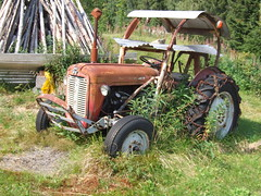 DSCF1700 Ferguson tractor, Trysil, Norway (boaski) Tags: summer mountain nature norway norge norwegen norvegia osen noorwegen trysil hedmark norwege sterdalen norwegia sreosen