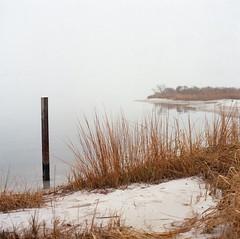 (AndrewStraub) Tags: 120 film beach nature water grass fog reeds landscape photography bay kodak foggy reflect bronica marsh portra sqa